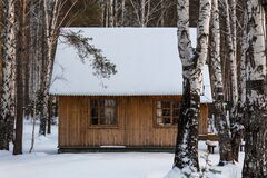 Wooden cozy house in a snowy forest. Nice Christmas atmosphere