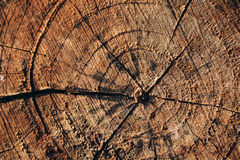 Wooden cracked brown circle vintage background. Royalty Free Stock Photos