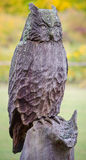 Wooden crafted owl sculpture Stock Images