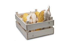 Wooden crate with corn ears Stock Images