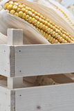 Wooden crate with corn ears Stock Image
