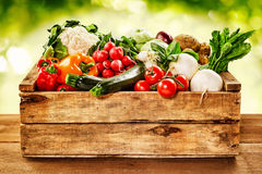 Wooden crate of farm fresh vegetables. With cauliflower, tomatoes, zucchini, turnips and colorful sweet bell peppers on a wooden table outdoors in sparkling Royalty Free Stock Image