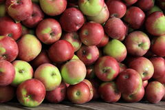 Wooden crate filled with apples Stock Photography
