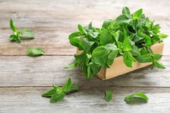 Wooden crate with fresh mint. On table stock photo