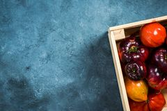 Wooden crate full of market fresh ripe tomatoes stock photography