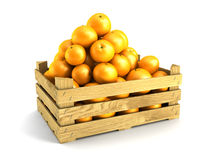 Wooden crate full of oranges. Isolated 3d rendering Royalty Free Stock Photos