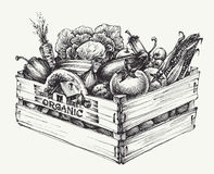 Wooden crate full of organic food Stock Photo