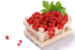 Wooden crate full of red currant Royalty Free Stock Images