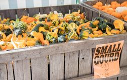 Variety of gourds for sale at market stock images
