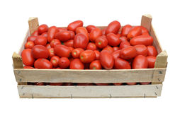 Wooden crate full of tomatoes Stock Photography
