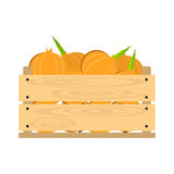 Wooden crate with onions Stock Photos