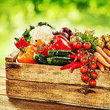 Wooden crate with vegetables in crate Stock Images