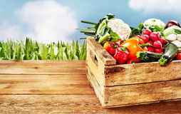 Wooden crate with vegetables in crate Stock Photos