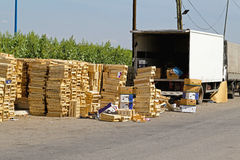Fruits transport crates Stock Image