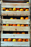 Wooden crates with oranges Royalty Free Stock Images