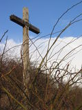 Wooden cross with bushes Royalty Free Stock Photo