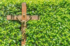 Wooden crucifix with INRI written on it in front of a hedge with green leaves royalty free stock photos