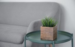 Wooden cube plant pot on green metal modern table. And gray sofa royalty free stock photo