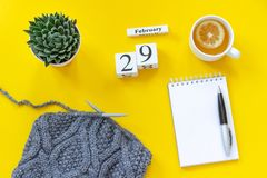 Wooden cubes calendar February 29th. Cup of tea with lemon, empty open notepad for text. Pot with succulent and gray fabric on royalty free stock images