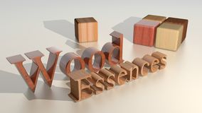 Wooden cubes - Essences - Logo Stock Images