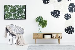 Monstera leaves in flat interior. Wooden cupboard with monstera leaves in vase next to chair in flat interior with green poster Stock Images