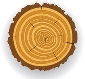 Wooden cut Royalty Free Stock Image