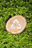 Wooden cut on grass and recycle symbol Royalty Free Stock Image