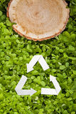 Wooden cut on grass and recycle symbol Stock Images