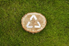 Wooden cut on grass and recycle symbol Royalty Free Stock Images