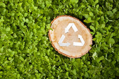 Wooden cut on grass and recycle symbol Stock Photos