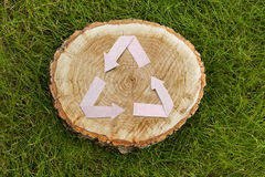 Wooden cut on grass and recycle symbol Royalty Free Stock Photo