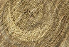 Wooden cut texture Stock Photos