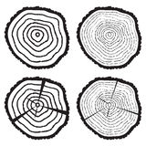 Vector wooden cut of a tree log. Vector collection of black and white wooden cut of a tree log with concentric rings and bark Stock Photo
