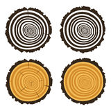Wooden cut of a tree log with concentric rings, vector. Wooden cut of a tree log with concentric rings and bark, trunk section texture with rough circles royalty free illustration