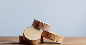 Wooden cut trunk Royalty Free Stock Photography
