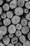 Wooden cuts background. Black and white wooden cuts background Stock Photos