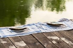 Wooden deck with fish on it Stock Image