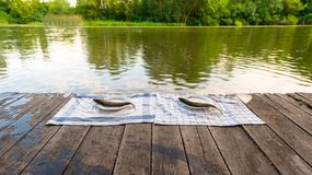 Wooden deck with fish on it Royalty Free Stock Photos