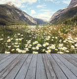 Wooden deck overlooking view of mountains. Wooden deck overlooking scenic view of mountains and flowers royalty free stock photos