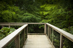 Wooden deck in a park Stock Photography