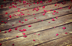 Wooden deck and pink flowers. Royalty Free Stock Photo
