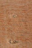 Wooden deck. Royalty Free Stock Photos