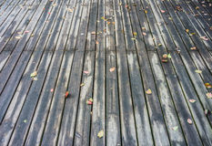 On a wooden deck Stock Images