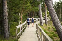 Wooden deck in the wood with observation decks. Couple walk on wooden deck in the wood with observation decks stock photography