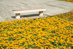 Wooden decking with bench and flowers Stock Image