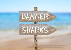 Wooden direction sign with danger shark Stock Image