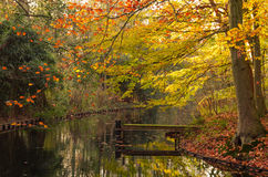 Wooden dock in the autumn Stock Photos