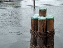Wooden dock columns sitting near a pier in local dock stock image