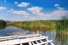 Wooden dock on wild lake Stock Image