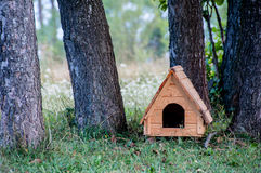 Wooden dog house. Among trees stock photos